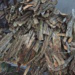 木端の代表格である樹皮はいい燃料