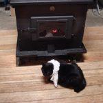 猫と薪ストーブ